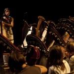 stage de harpe